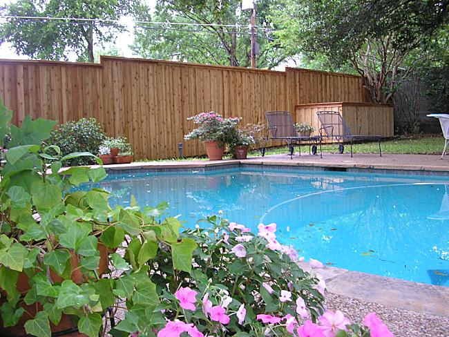 Swimming Amp Spa Pool Barriers Fences The Ultimate In