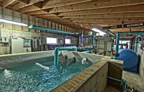 Crestwood Cove Waterpark Pump House