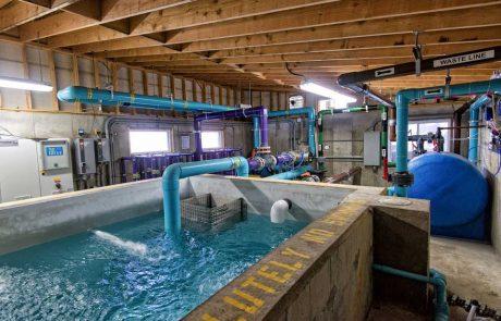 Crestwood Day Camp Splash Pad Pump House
